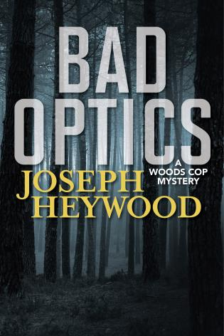 Cover image for the book Bad Optics