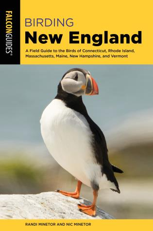 Cover image for the book Birding New England: A Field Guide to the Birds of Connecticut, Rhode Island, Massachusetts, Maine, New Hampshire, and Vermont