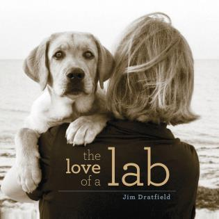Cover image for the book The Love of a Lab