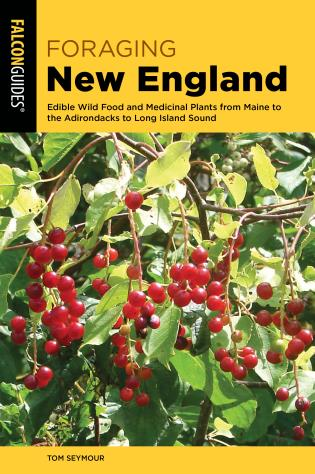 Cover image for the book Foraging New England: Edible Wild Food and Medicinal Plants from Maine to the Adirondacks to Long Island Sound, 3rd Edition