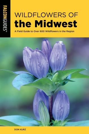 Cover image for the book Wildflowers of the Midwest: A Field Guide to Over 600 Wildflowers in the Region