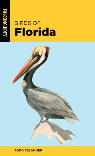 Cover image for the book Birds of Florida, 2nd Edition
