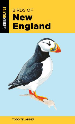Cover image for the book Birds of New England, 2nd Edition