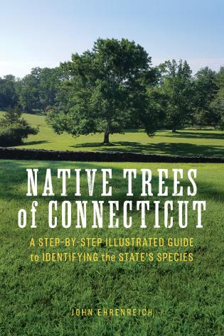 Cover image for the book Native Trees of Connecticut: A Step-by-Step Illustrated Guide to Identifying the State's Species