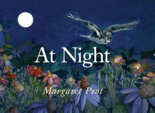Cover image for the book At Night