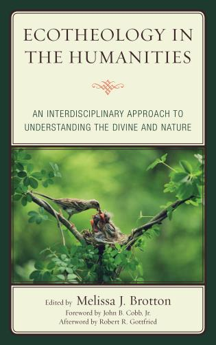 Cover image for the book Ecotheology in the Humanities: An Interdisciplinary Approach to Understanding the Divine and Nature