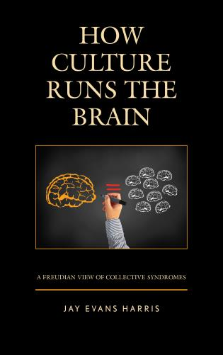 Cover image for the book How Culture Runs the Brain: A Freudian View of Collective Syndromes