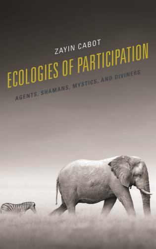 Cover image for the book Ecologies of Participation: Agents, Shamans, Mystics, and Diviners