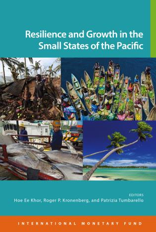 Cover image for the book Resilience And Growth In The Small States Of The Pacific