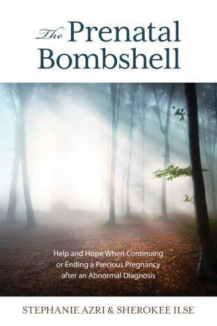 Cover image for the book The Prenatal Bombshell: Help and Hope When Continuing or Ending a Precious Pregnancy After an Abnormal Diagnosis