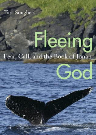 Cover image for the book Fleeing God: Fear, Call, and the Book of Jonah