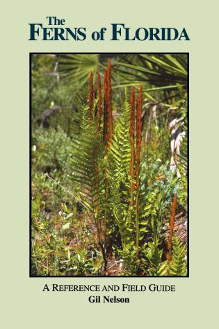 Cover image for the book The Ferns of Florida: A Reference and Field Guide