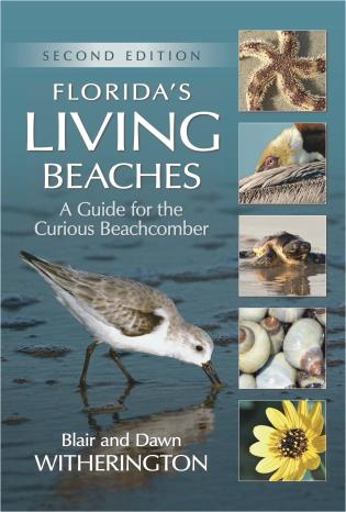 Cover image for the book Florida's Living Beaches: A Guide for the Curious Beachcomber, Second Edition