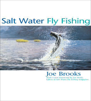 Cover image for the book Salt Water Fly Fishing