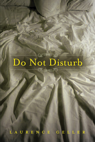 Cover image for the book Do Not Disturb: A Novel