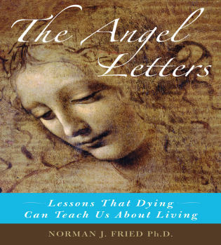 Cover image for the book The Angel Letters: Lessons That Dying Can Teach us About Living