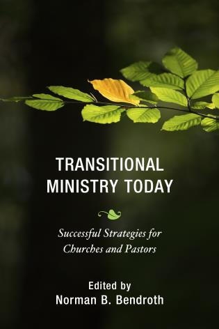 Cover image for the book Transitional Ministry Today: Successful Strategies for Churches and Pastors