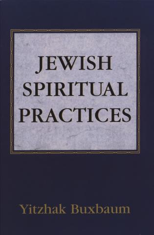 Cover image for the book Jewish Spiritual Practices