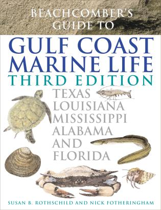 Cover image for the book Beachcomber's Guide to Gulf Coast Marine Life: Texas, Louisiana, Mississippi, Alabama, and Florida, Third Edition