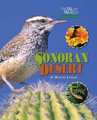 Cover image for the book The Sonoran Desert