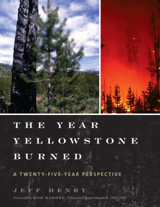 Cover image for the book The Year Yellowstone Burned: A Twenty-Five-Year Perspective