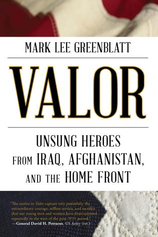 Cover image for the book Valor: Unsung Heroes from Iraq, Afghanistan, and the Home Front