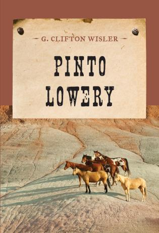 Cover image for the book Pinto Lowery