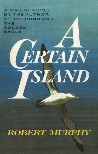 Cover image for the book A Certain Island