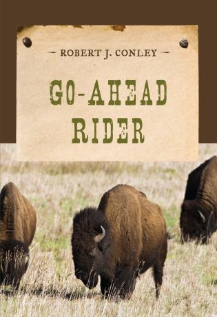 Cover image for the book Go-Ahead Rider