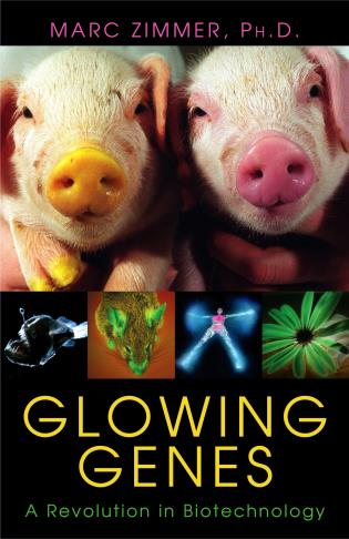 Cover image for the book Glowing Genes: A Revolution In Biotechnology
