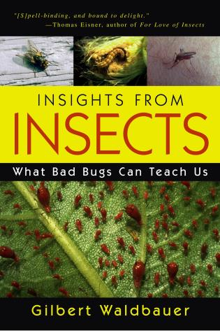 Cover image for the book Insights From Insects: What Bad Bugs Can Teach Us