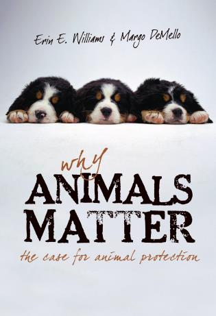 Cover image for the book Why Animals Matter: The Case for Animal Protection