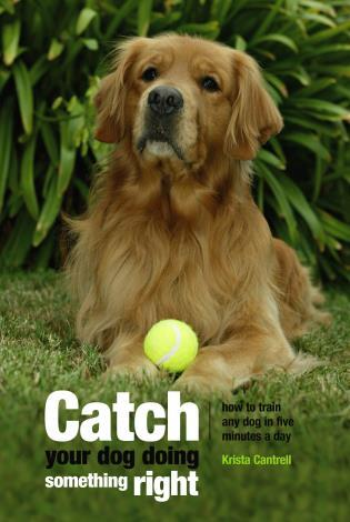 Cover image for the book Catch Your Dog Doing Something Right: How To Train Any Dog In Five Minutes A Day