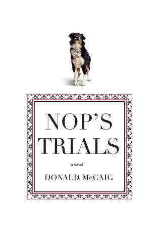 Cover image for the book Nop's Trials: A Novel