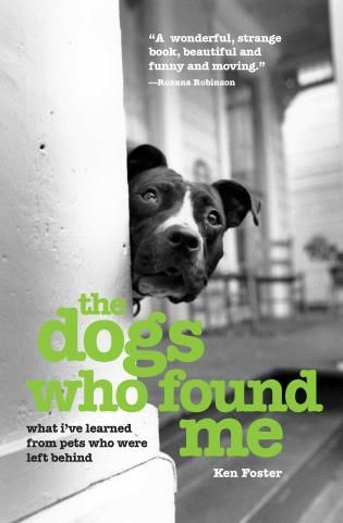 Cover image for the book The Dogs Who Found Me: What I've Learned from Pets Who Were Left Behind