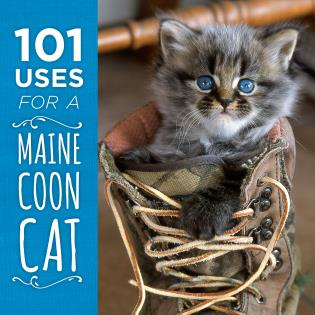 101 Uses for a Maine Coon Cat - 9781608936069