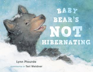 Cover image for the book Baby Bear's Not Hibernating