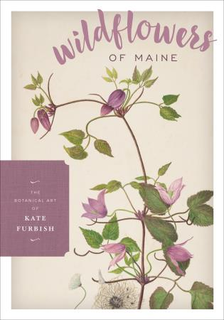 Cover image for the book Wildflowers of Maine