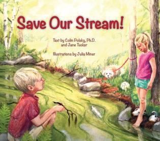 Cover image for the book Save Our Stream