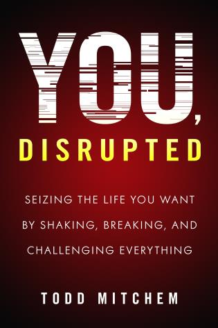 Cover image for the book You, Disrupted: Seizing the Life You Want by Shaking, Breaking, and Challenging Everything