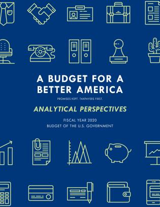 Cover image for the book Analytical Perspectives: Budget of the United States Government Fiscal Year 2020