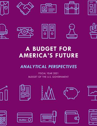 Cover image for the book A Budget for America's Future: Analytical Perspectives, Budget of the U.S. Government, Fiscal Year 2021