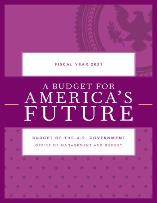 Cover image for the book A Budget for America's Future: Budget of the U.S. Government, Fiscal Year 2021