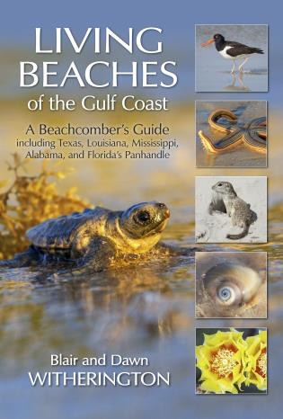 Cover image for the book Living Beaches of the Gulf Coast: A Beachcombers Guide including Texas, Louisiana, Mississippi, Alabama and Florida's Panhandle