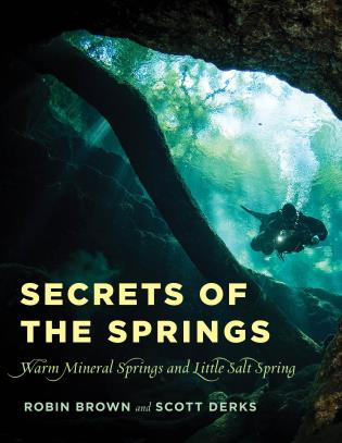 Cover image for the book Secrets of the Springs: Warm Mineral Springs and Little Salt Spring