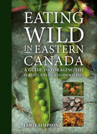 basic illustrated edible wild plants and useful herbs jim meuninck