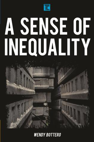 Cover image for the book A Sense of Inequality