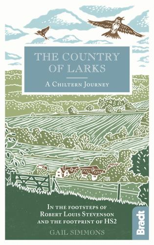 Cover image for the book The Country of Larks: A Chiltern Journey in the footsteps of Robert Louis Stevenson and the footprint of HS2