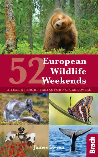 Cover image for the book 52 European Wildlife Weekends: A Year of Short Breaks for Nature Lovers, First edition