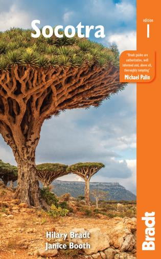 Cover image for the book Socotra